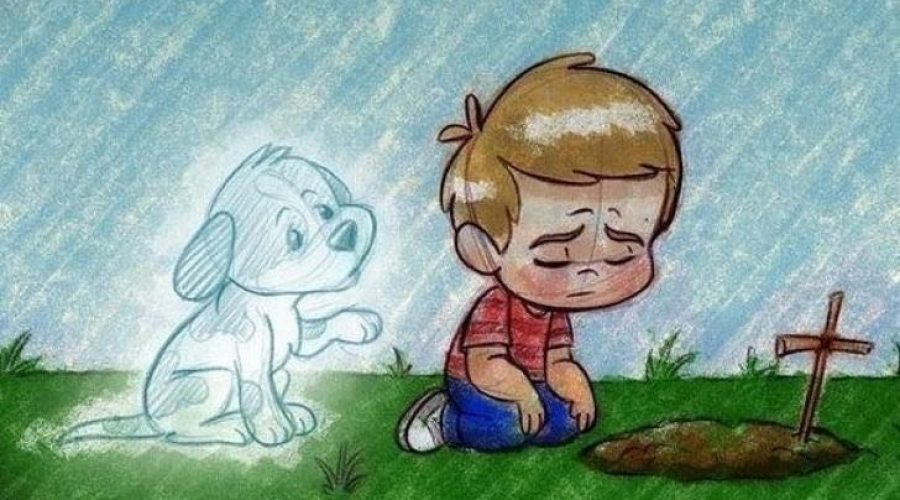 "LOSING A PET IS PAINFUL MOST PEOPLE DON""T"